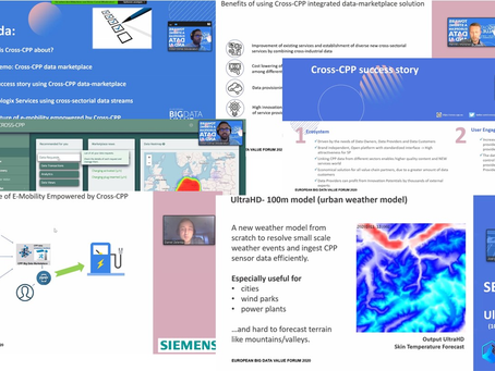 Cross-CPP successfully presented at EBDVF 2020