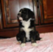 Baby1 10-18-19.JPG
