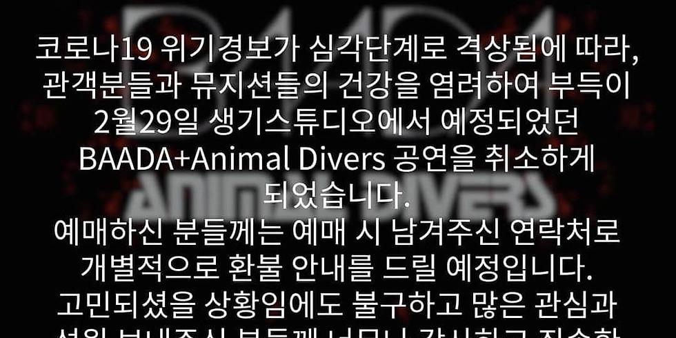 (공연 취소안내) Animal Divers & BAADA