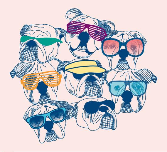 SummerBulldogs.png