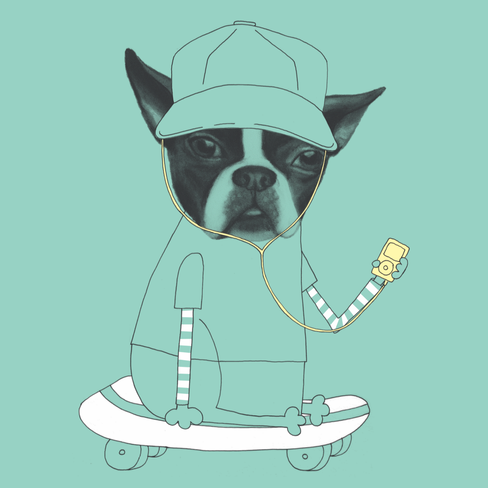 SkateboardDog.png
