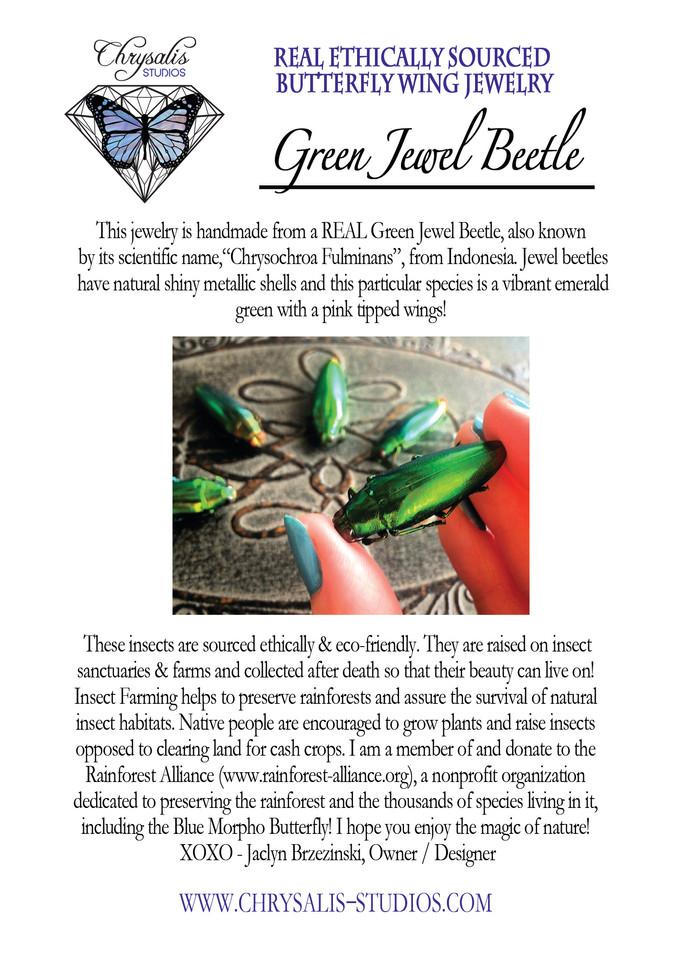 green jewel beetle postcard.jpg