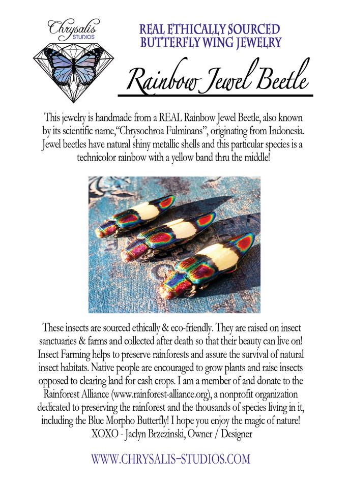 rainbow jewel beetle postcard.jpg