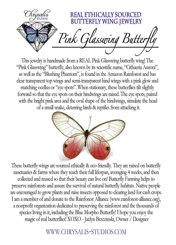 pink glasswing postcard.jpg