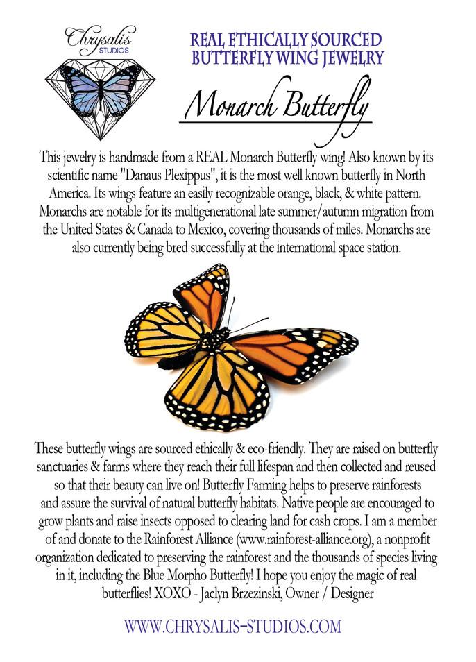 Monarch postcard.jpg