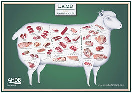 ahdb-lamb-571-web.jpg