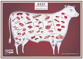 ahdb-beef-572-web.jpg