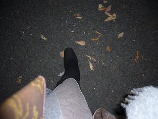 木枯らし一号~冬の足音