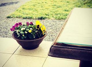 春が来る♡