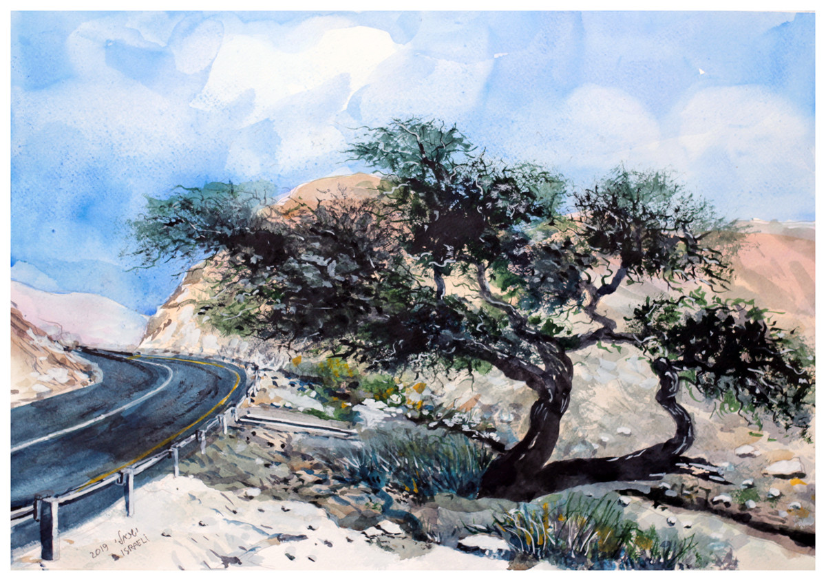 כביש 31  ערד-סדום