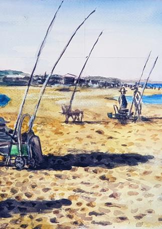 דייגי הבוקר