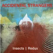 Accidental Strangers