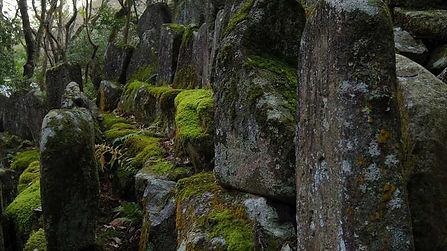Mitaki Temple Mossy Stones