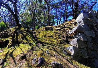 Hirohima tour as Hirosima Castle