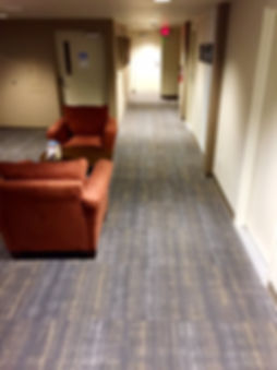Professional Carpet Cleaning in Tucson