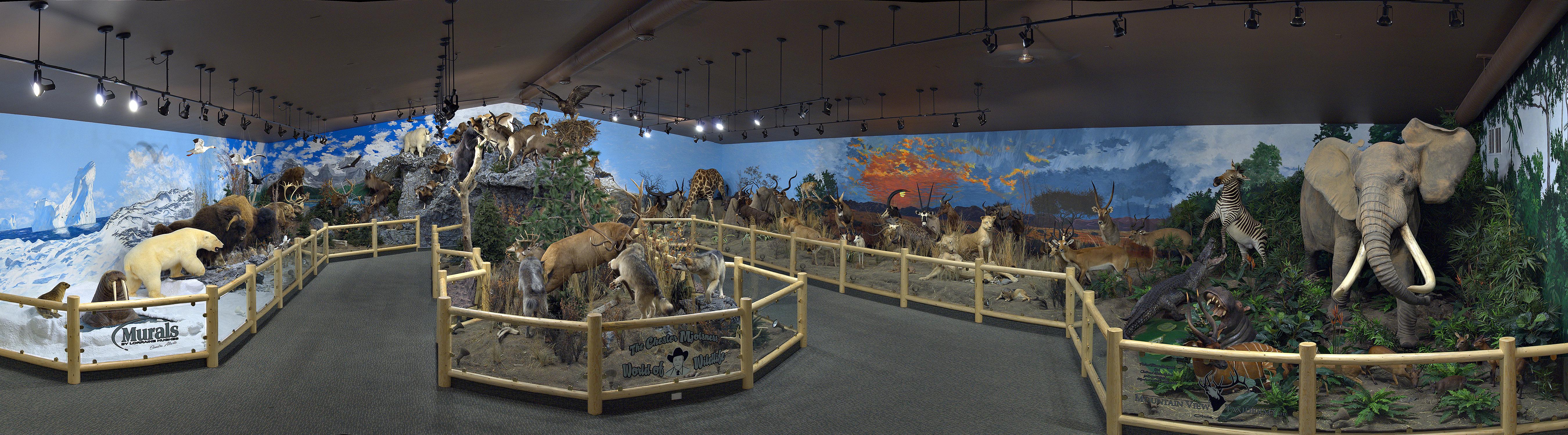 Wildlife Exhibit Panoramic