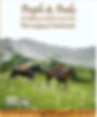 People & Peaks: Willmore Wilderness Park