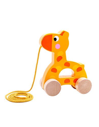 Trekdiertje giraf