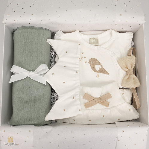 Little Princess newborn box