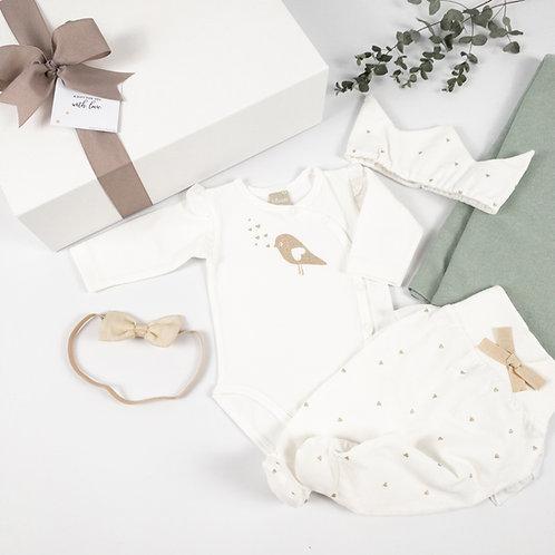 Little Princess newborn box