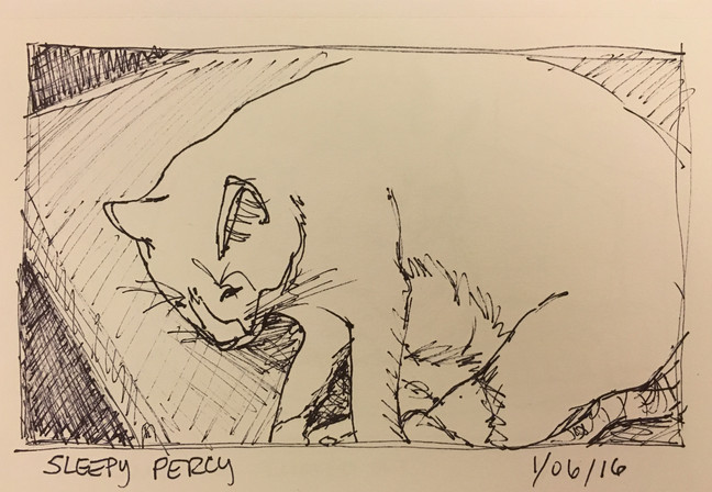 58 Drawings of My Cats