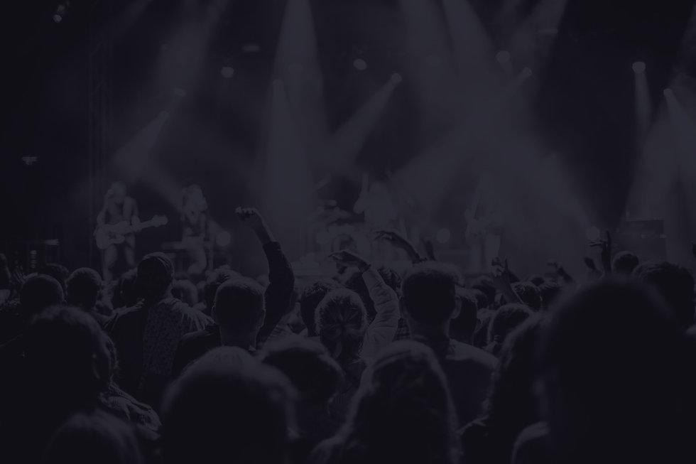 Concert Live Audience _edited.jpg