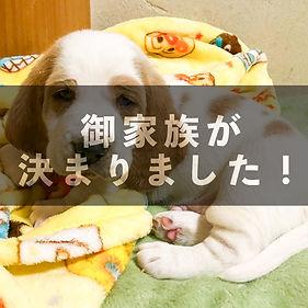 03_main5.jpg