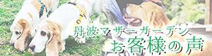 トップバナー_08.jpg