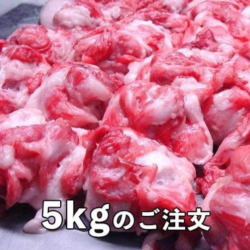本マグロ 目玉 5kg