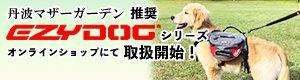 トップバナー_09.jpg