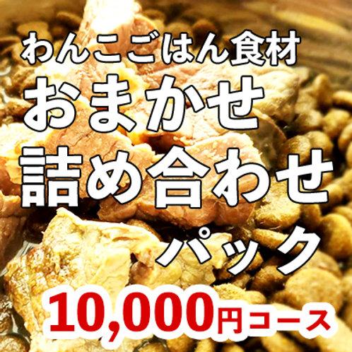 わんこごはん食材 おまかせ詰め合わせパック 10,000円コース