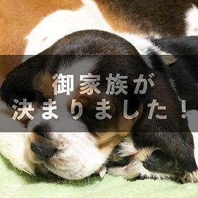 07_main4_2.jpg