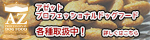 トップバナー_05.jpg