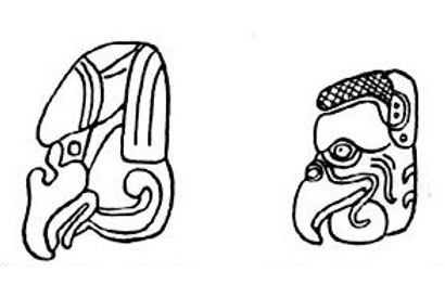 Mayan glyphs of zopilotes, or black vultures