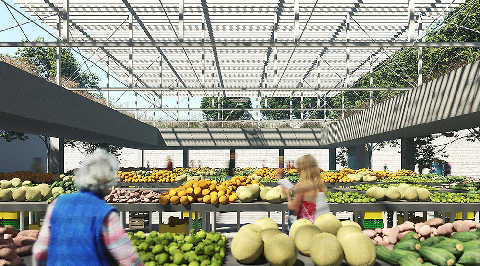 view inside the green marketplace with light steel and translucent roof above