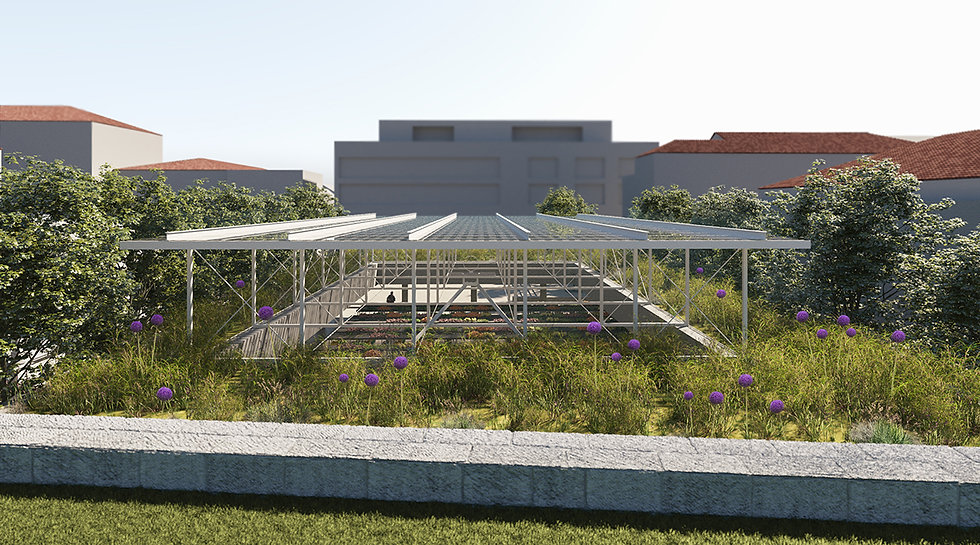 view from city walls onto the green roof, light structure and marketplace underneath