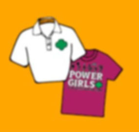 Shirts Orange Graphic.JPG
