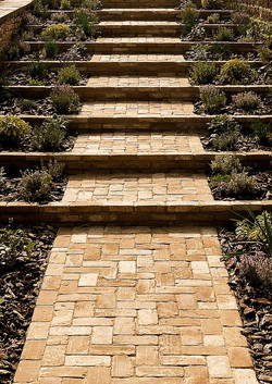 Clay brick steps with herb planting
