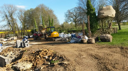 Specimen trees arrive on site