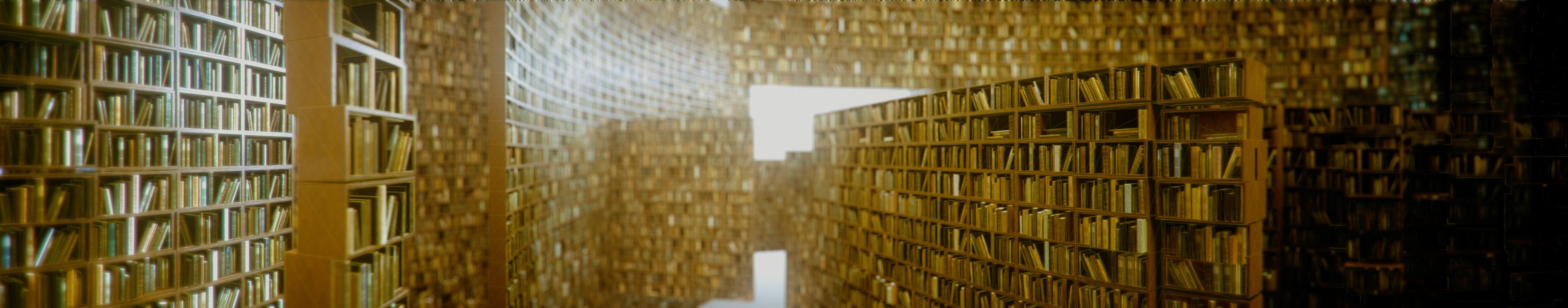 3d infinite library