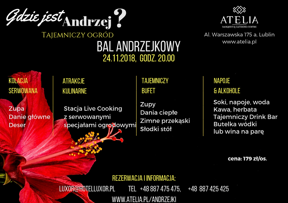 Andrzej A 6(1).png