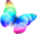 butterfly-clip-art-16.png