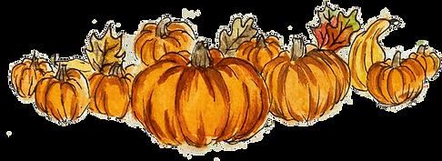 Pumpkin Patch artwork TINYPNG.png