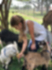 girl feeding pygmy goats FB tinypng.jpg