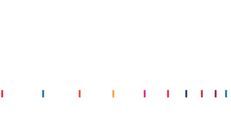 Decade of Action Logo White.png