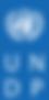 UNDP-Logo-Blue.png