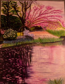 """""""Reflections in Pink"""""""