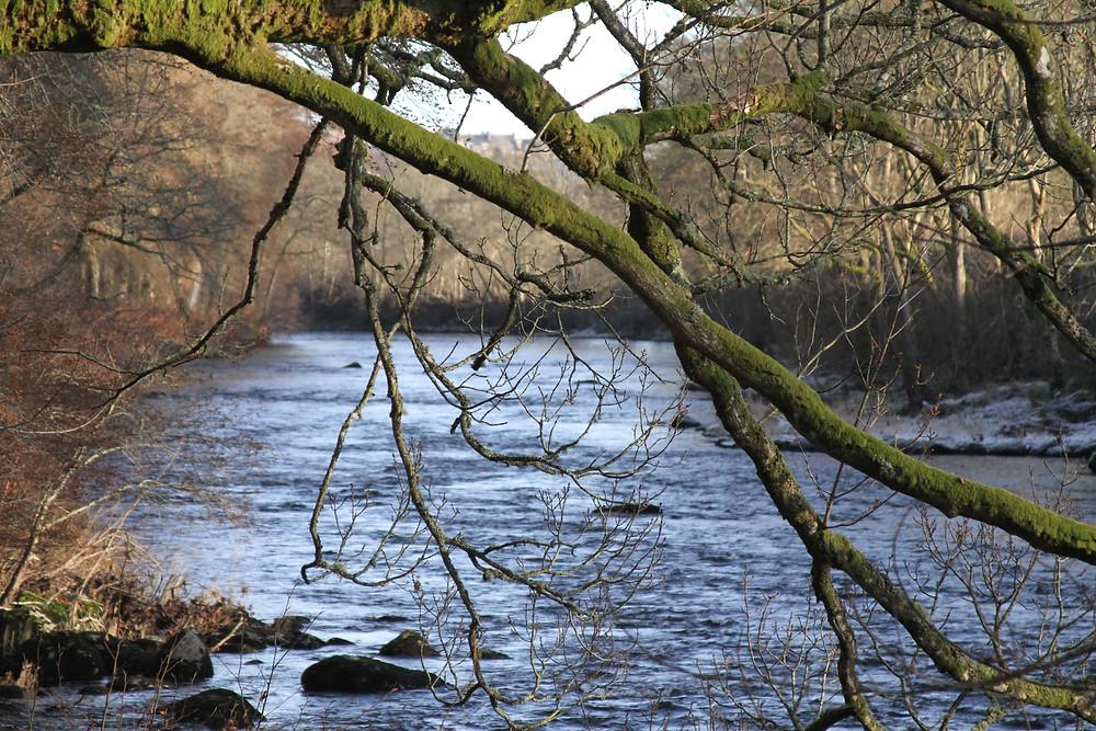 River Earn , Lady Mary's Walk