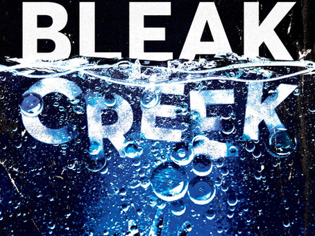 The Lost Causes of Bleak Creek by Rhett McLaughlin and Link Neal | Book Review