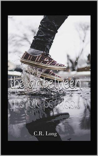 The Air Between by C.R. Long | Book Review